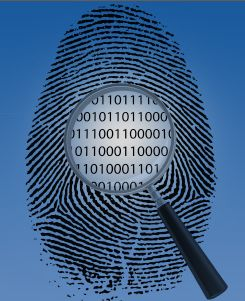 Security fingerprint analysis