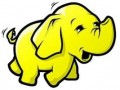 Hadoop top