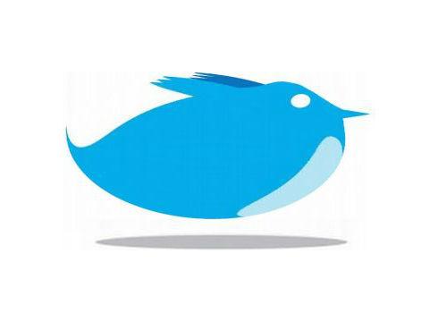 Twitter Bloated Landscape