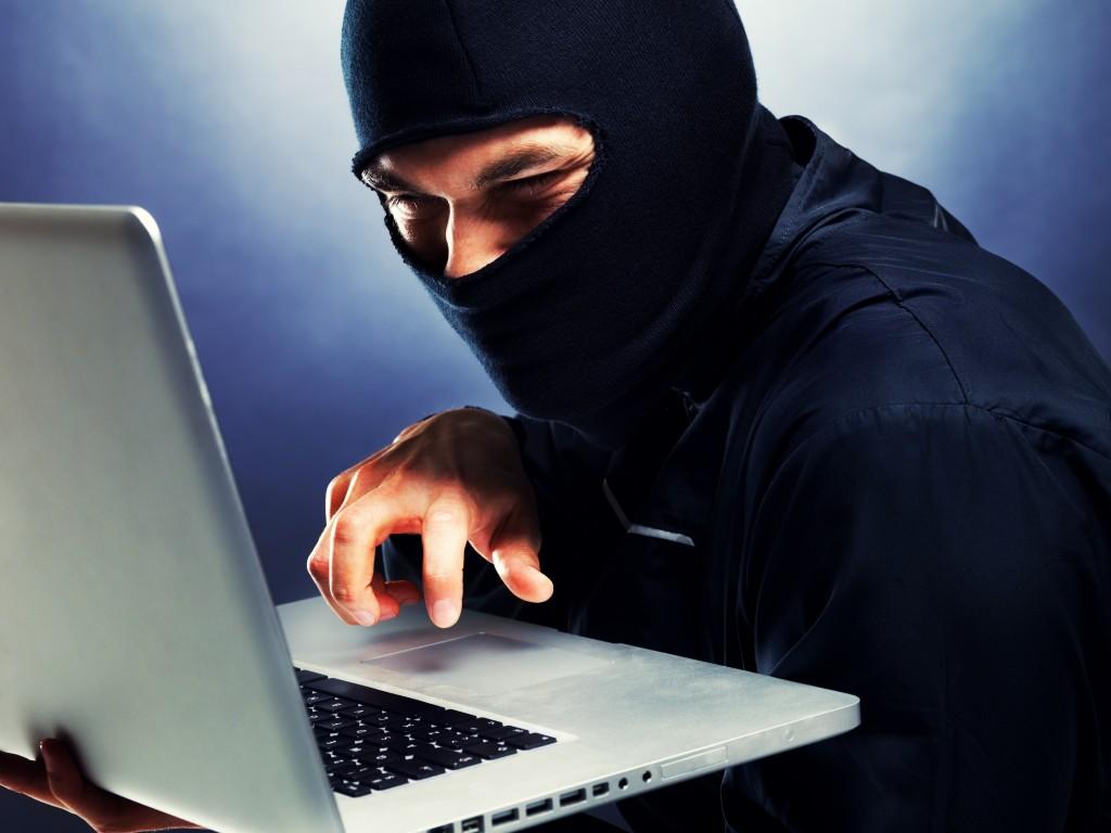 computer hacker essay