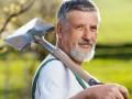 digg spade gardener © lightpoet - Fotolia.com