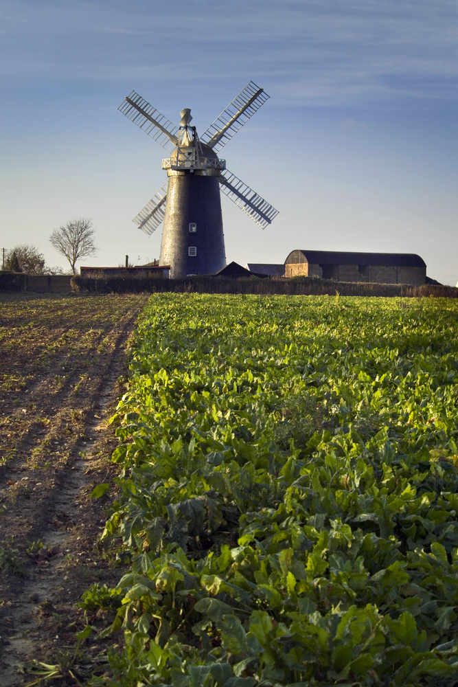 windmill suffolk country rural © Douglas Freer shutterstock