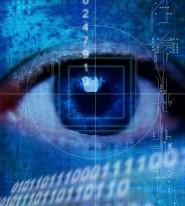 surveillance cyber crime