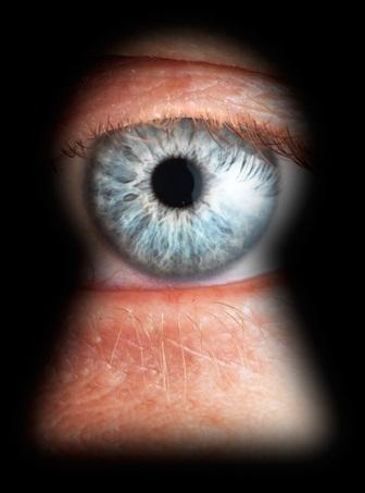Privacy © Tischenko Irina Shutterstock 2012