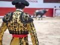 spain bullfight bull matador © Motmot Shutterstock