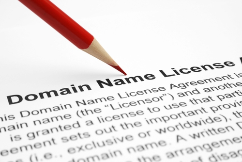 Domain name © alexskopje Shutterstock 2012