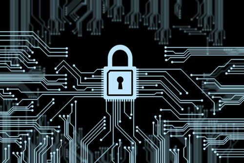 Security © m00osfoto Shutterstock 2012