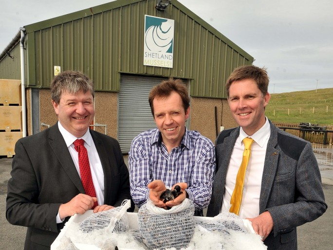 Vodafone femtocell shetland mussels