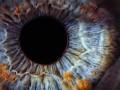 Iris scan retina biometric
