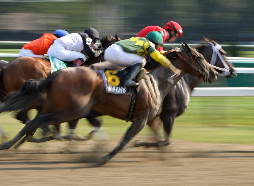 horse racing race speed © Cheryl Ann Quigley Shutterstock