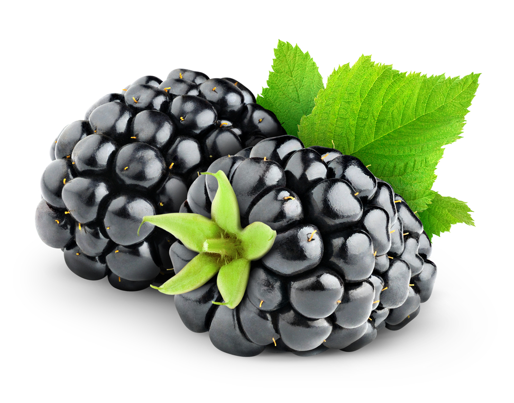 Blackberry fruit nice and luscious © Anna Kucherova Shutterstock