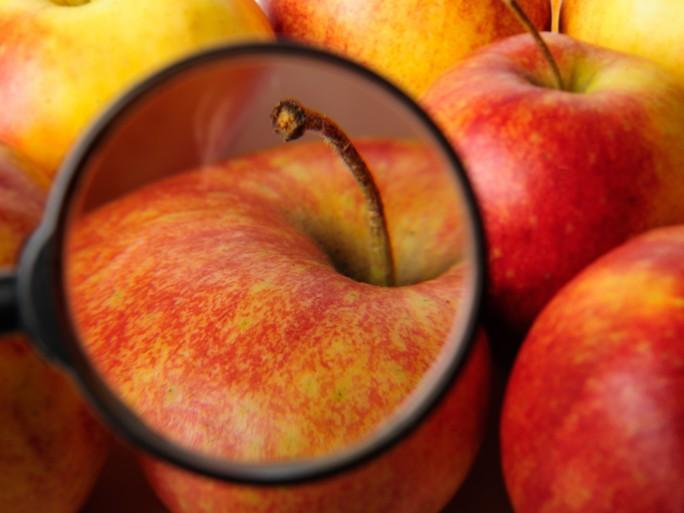 apple, snooping surveillance privacy © Dmitry Vinogradov Shutterstock