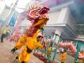 China Chinese New Year dragon © sippakornShutterstock
