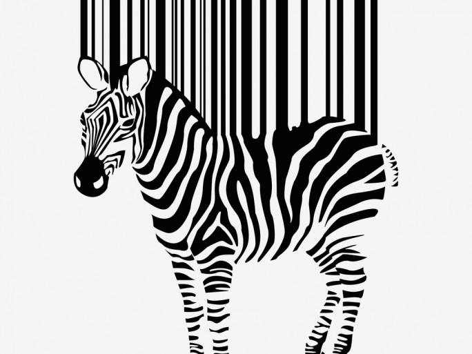 barcode zebra stock motorola © Dimec Shutterstock