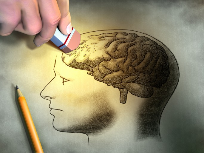 Memory storage, deletion brain drawgin © Andrea Danti Shutterstock