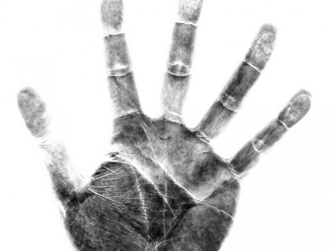 handprint palm vein biometric scan security identity © Claudia Perez Leal Shutterstock