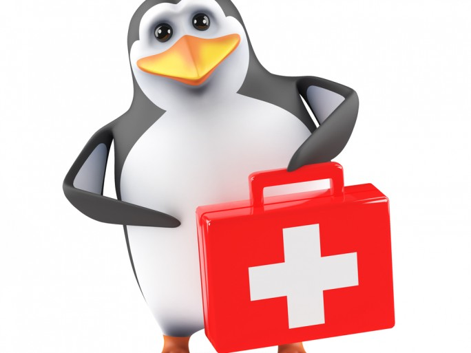 Linux security training course