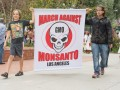 Monsanto GM protest Los Angelese security agriculture © betto rodrigues shutterstock