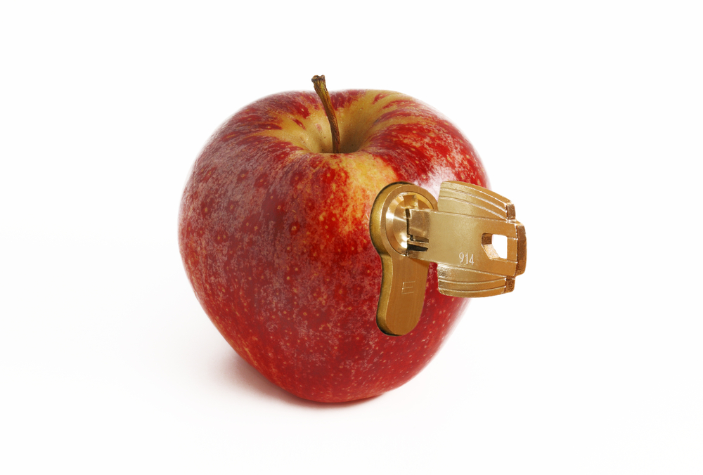 Apple security lock key backdoor security privacy ios © SynthManiac Shutterstock
