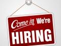 hiring jobs wanted