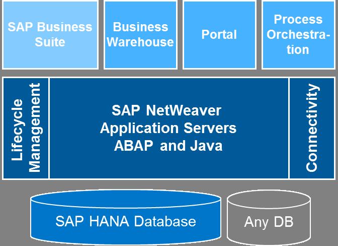SAP NetWeaver platform